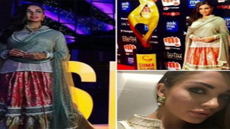 """Amy Jackson """"Drop Dead Gorgeous at SIIMA"""""""