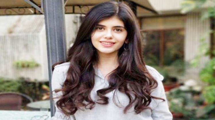 """Sushant Singh Rajput and Sanjana Sanghi to star in """"The Fault In Our Stars"""" Hindi remake"""