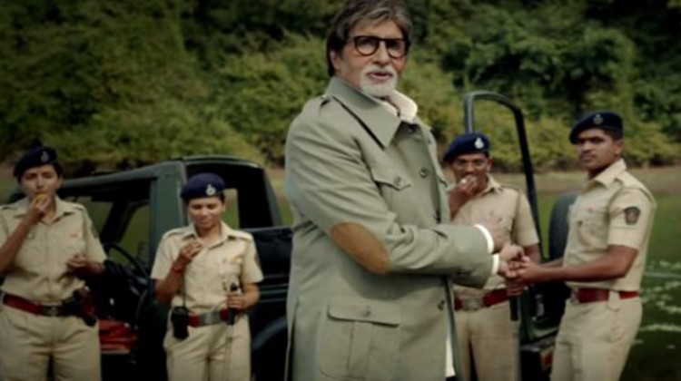 Tiger Numbers Are Increasing, Triumph Of The Campaign – Amitabh Bachchan